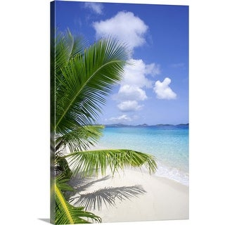 """Coconut palm tree, beach, and ocean in the Virgin Islands, Caribbean"" Canvas Wall Art"