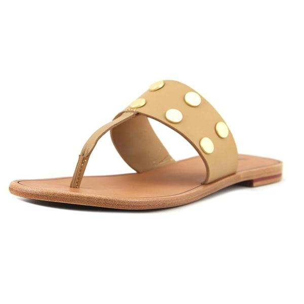 Hammitt Max Women Open Toe Synthetic Tan Thong Sandal