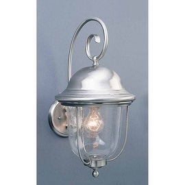 """Volume Lighting V9021 1 Light 19"""" Height Outdoor Wall Sconce with Clear Seedy Glass"""