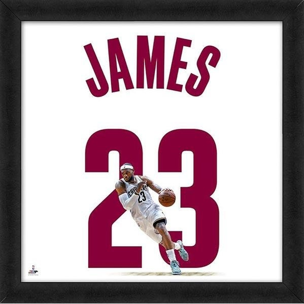 Lebron James Framed Cleveland Cavaliers 20x20 White Jersey Photo