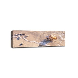 Seashell - Beach Photography - 48x16 Gallery Wrapped Canvas Wall Art