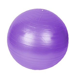 Gym Exercise Balance Fitness Yoga Ball Purple 65cm Dia w Inflator Pump