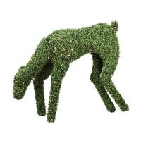 "42"" Pre-Lit Boxwood Feeding Reindeer Outdoor Christmas Decoration - Warm White LED Lights - green"