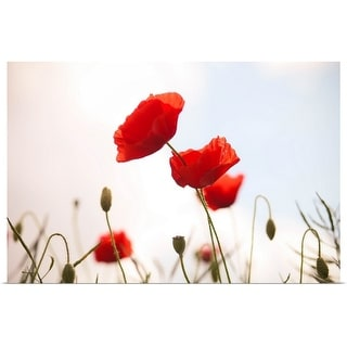 """""""Poppies."""" Poster Print"""