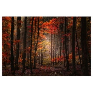 """""""Orton wood"""" Poster Print"""
