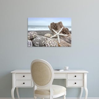 Easy Art Prints Alan Blaustein's 'Crescent Beach Shells 5' Premium Canvas Art