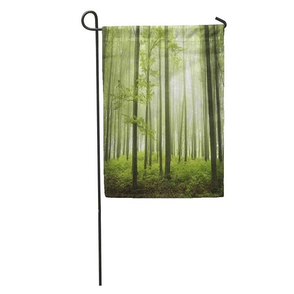Brown Tree Trail In Foggy Forest During Spring Green Into The Mist Orange Enchanted Garden Flag Decorative Flag House N A On Sale Overstock 31405146