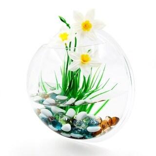 Wall Mounted Acrylic Fishbowl Betta Tank Hanging Plant Pot Bowl Home Decorations