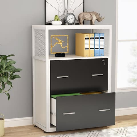 2 Drawer Lateral File Cabinet Modern