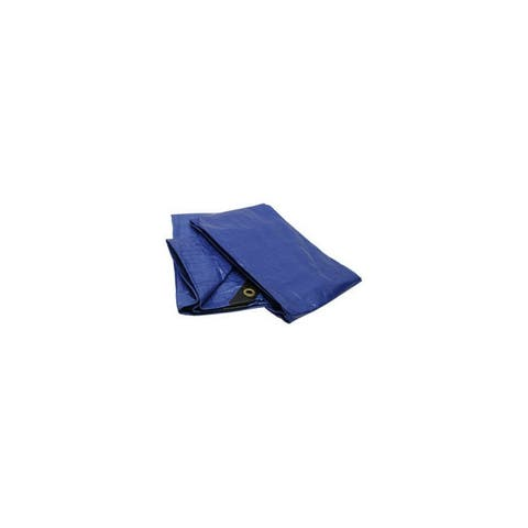 Roadpro r rptp-68 6 x8 tarp with reinforced corners blue