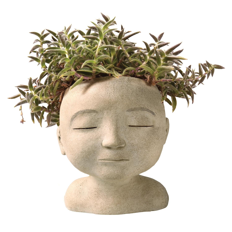 Shop Art Artifact Head Of A Man Indoor Outdoor Planter