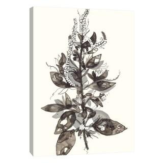 "PTM Images 9-108533  PTM Canvas Collection 10"" x 8"" - ""Transparent Floral 4"" Giclee Flowers Art Print on Canvas"