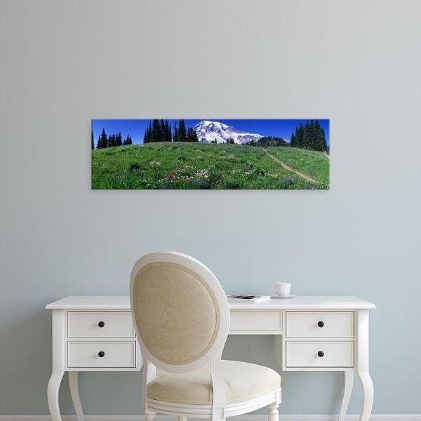 Easy Art Prints Panoramic Images's 'Meadow, Mount Rainier, Washington State, USA' Premium Canvas Art