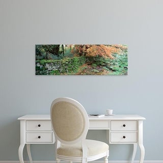Easy Art Prints Panoramic Images's 'Trees overhanging a stone wall, Dartmoor, Devon, England' Premium Canvas Art