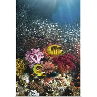 """""""Coral reef scenery"""" Poster Print"""