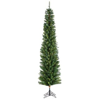 6.5 Foot Darwin Pencil Tree
