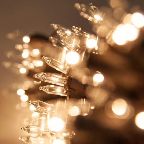 """8.3' Long Indoor Standard 20 Mini Light Holiday Light Strand with 4"""" Spacing and Brown Wire"""