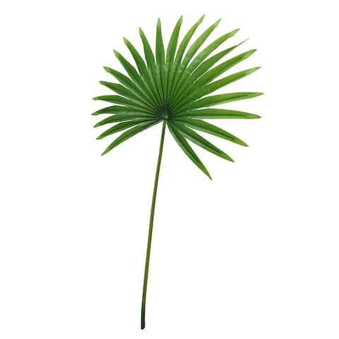 "Set of 3 Tropical Fan Palm Leaf Stem 32in - 32"" L x 16"" W x 0.5"" DP"