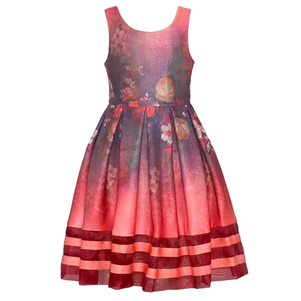 c0c74a806abe Shop Bonnie Jean Girls Red Flower Print Sleeveless Dress - Free Shipping On  Orders Over $45 - Overstock - 25490030