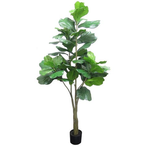 "6ft Natural Fiddle Leaf Fig Tree in Pot - 72"" H x 33"" W x 33"" DP"