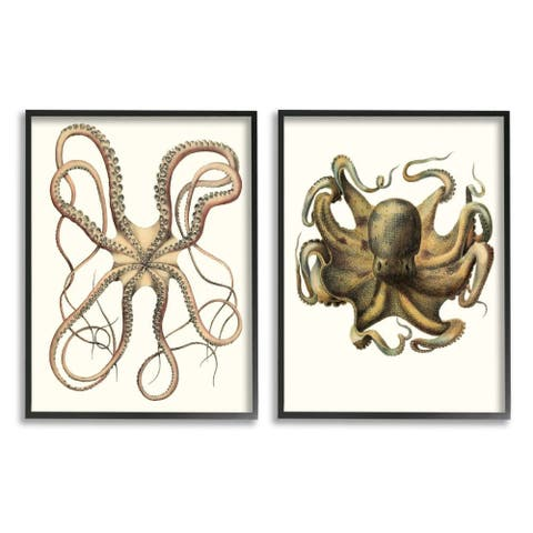 Stupell Industries Vintage Octopus Illustration Curved Tentacles Framed Wall Art