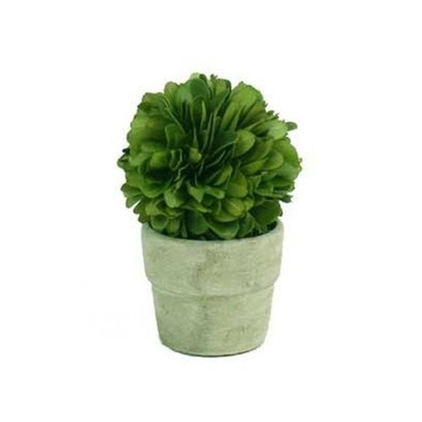 Autograph Foliages AUV-102770 4 ft. Boxwood Ball Topiary