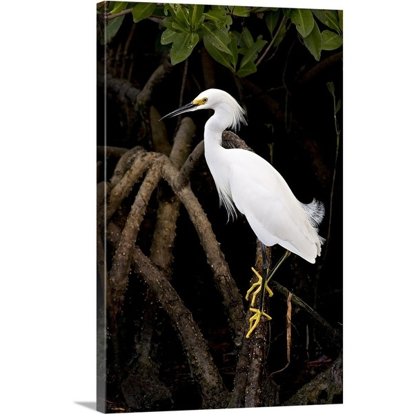 Shop Snowy Egret Multi Color Free Shipping Today