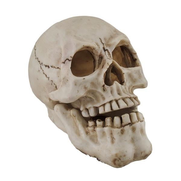 Human Skull Shaped Incense Burner Box - 5.75 X 7.75 X 4.5 inches