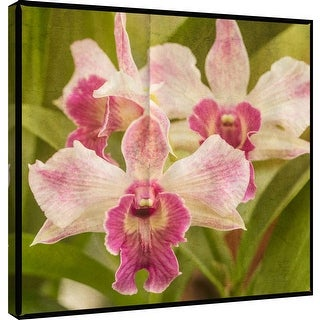 "PTM Images 9-101261  PTM Canvas Collection 12"" x 12"" - ""Pink Orchid Trio"" Giclee Orchids Art Print on Canvas"