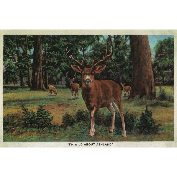 I'm Wild About Ashland, Oregon - Vintage Postcard (Art Print - Multiple  Sizes Available) - 9 x 12 Art Print