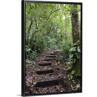 """""""Steps ascending on path, Tropical Cloud Forest, Costa Rica"""" Black Float Frame Canvas Art"""