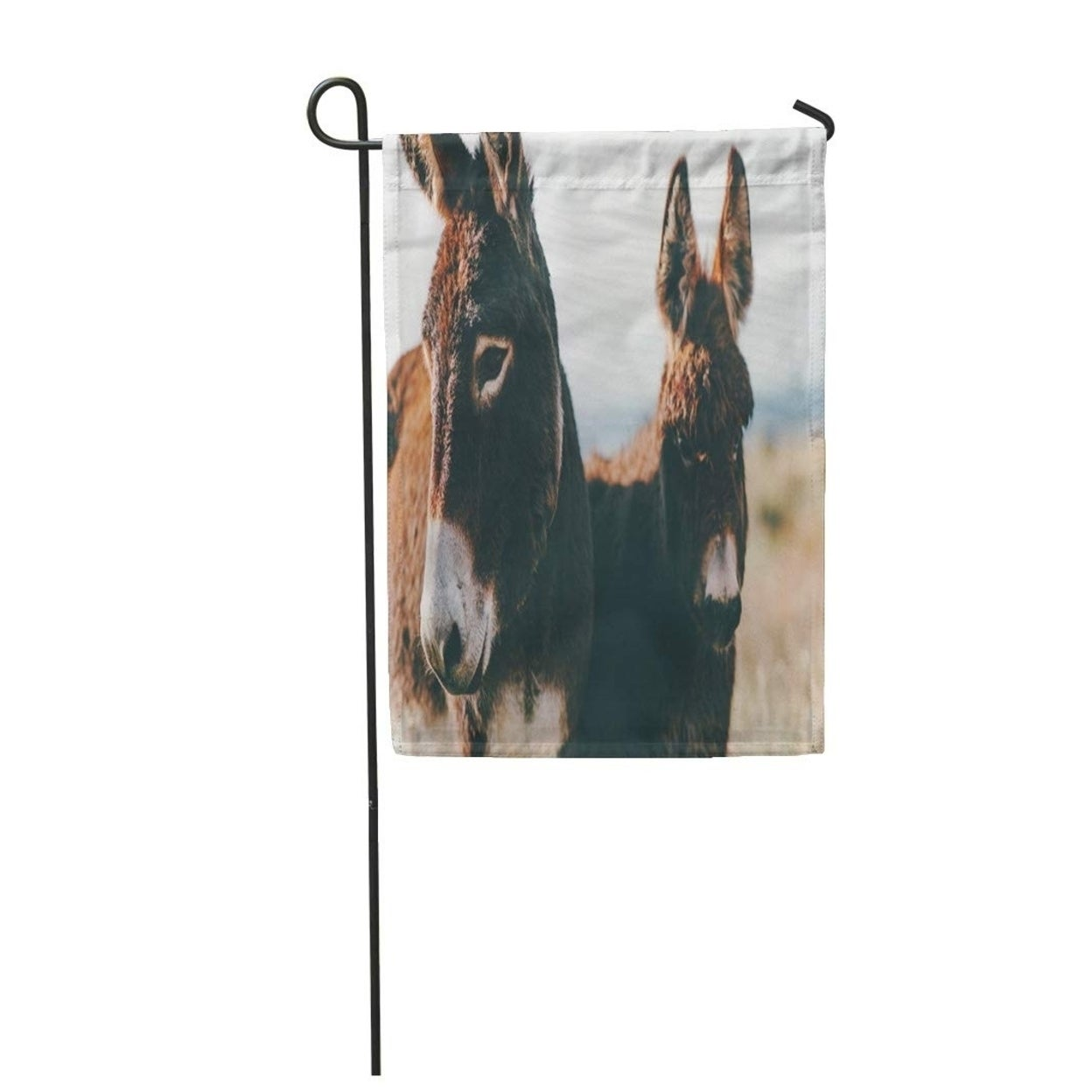 Shop Donkeys Farm Brown Colour Cute Funny Pets The Garden Flag Decorative Flag House Banner 12x18 Inch Overstock 31335883