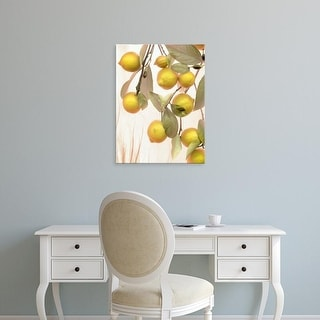 Easy Art Prints Alan Blaustein's 'Lemons #1' Premium Canvas Art