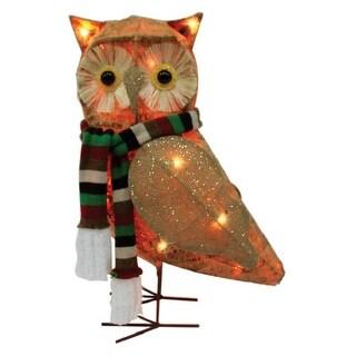 "Celebrations 50371-71 LED Owl Yard Art, Clear, MDF, 21"""