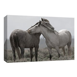"""PTM Images 9-148044  PTM Canvas Collection 8"""" x 10"""" - """"Affection"""" Giclee Horses Art Print on Canvas"""