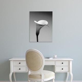 Easy Art Prints PhotoINC Studio's 'Calla No. 3' Premium Canvas Art