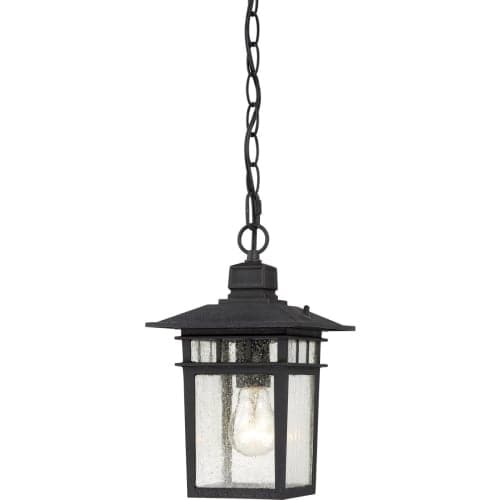 Nuvo Lighting 60/4956 Cove Neck Single-Light Hanging Lantern with Clear Seed Glass Panels