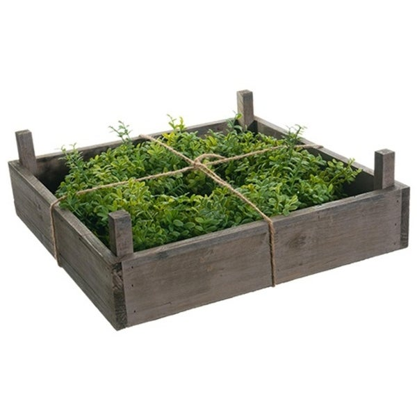"""14"""" Boxwood Artificial Spring Wreath in Rustic Wood Frame Box - green"""