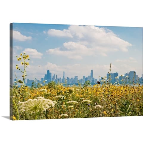 Chicago as seen from Montrose Harbor's bird sanctuary. - Multi-Color