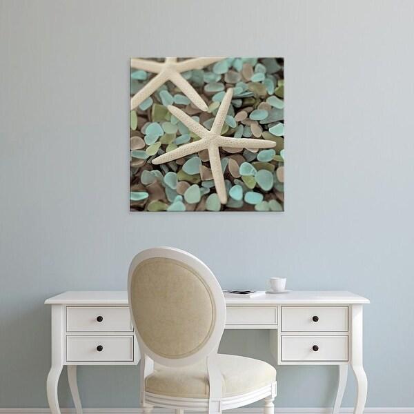 Easy Art Prints Alan Blaustein's 'Aquatic 1' Premium Canvas Art