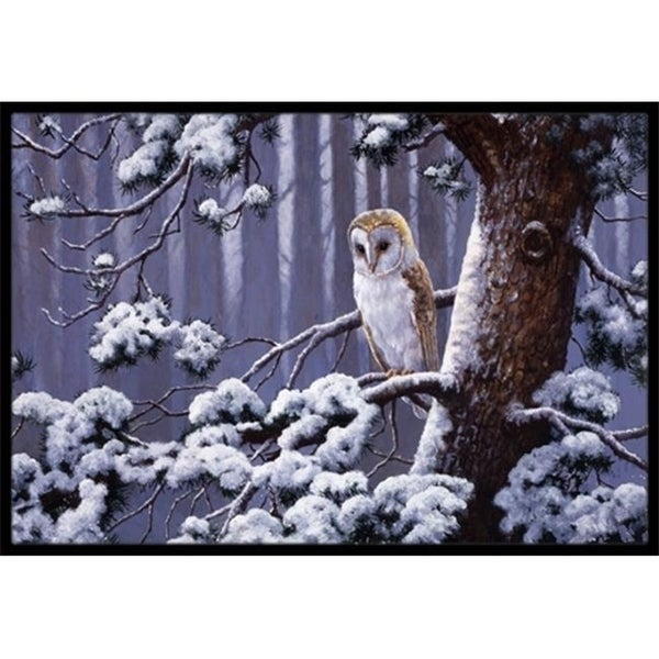 Carolines Treasures BDBA0303MAT Owl on a Tree Branch in the Snow Indoor or Outdoor Mat 18 x 27