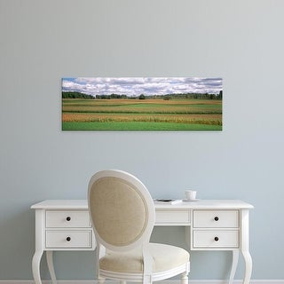 Easy Art Prints Panoramic Images's 'Corn field, Michigan, USA' Premium Canvas Art