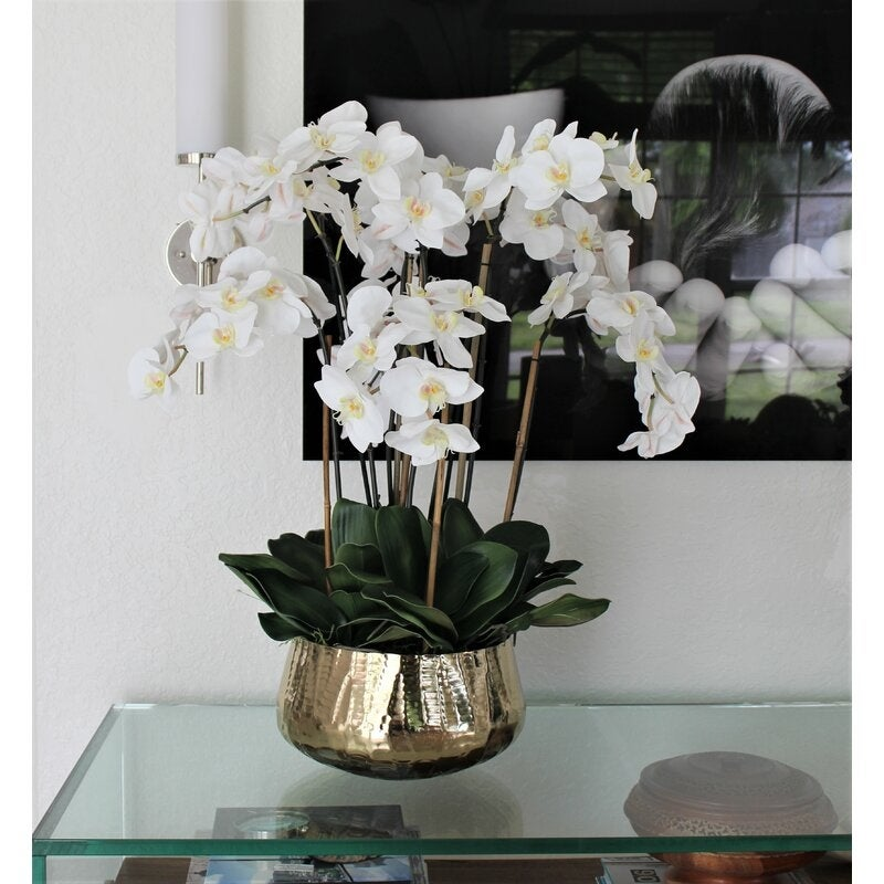 Phalaenopsis Orchids Floral Arrangement In Gold Planter Overstock 32223930