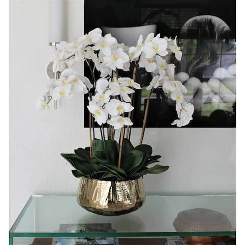 Phalaenopsis Orchids Floral Arrangement in Gold Planter
