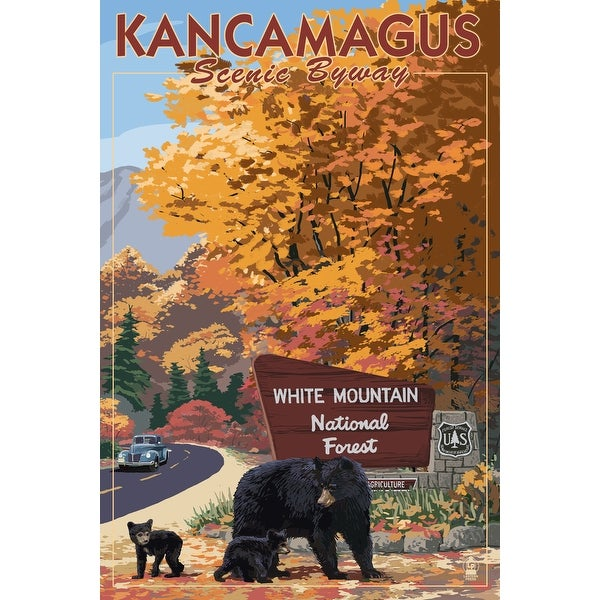White Mt NH - Kancamagus Scenic Byway - LP Artwork (100% Cotton Towel Absorbent)