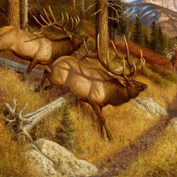 Custom Printed Rugs DM 64 Lambson Elk Spooked Elk