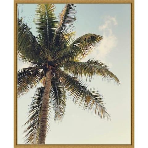 Coconut Palm by Olivia Joy Framed Canvas Art