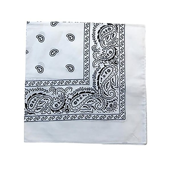 Pack of 480 Mechaly Unisex Paisley 100% Cotton Double Sided Bandanas - Bulk Wholesale