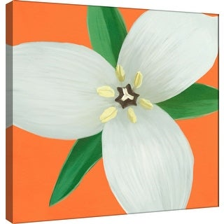 "PTM Images 9-100068  PTM Canvas Collection 12"" x 12"" - ""Flower Art 7"" Giclee Flowers Art Print on Canvas"
