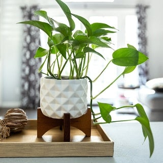 "Link to Mid-Century 5"" CERAMIC DIMPLE Pattern on Wood Stand,Matte White Similar Items in Planters, Hangers & Stands"